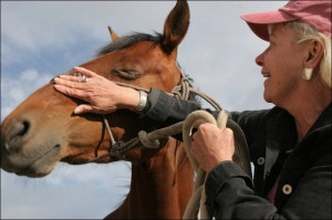 Woman patting a horse on the nose
