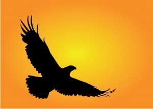 Silhouette of an eagle flying